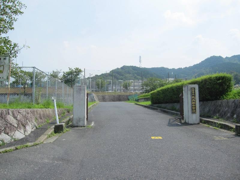 photo_row[1]