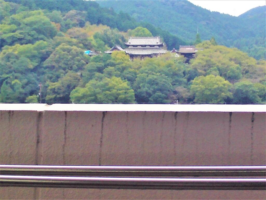 三井寺眺望