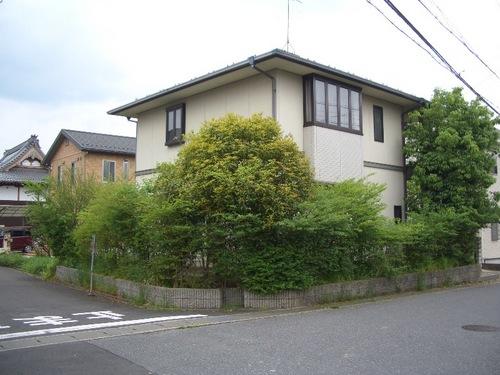 181-kasayama3-3230-1.jpg